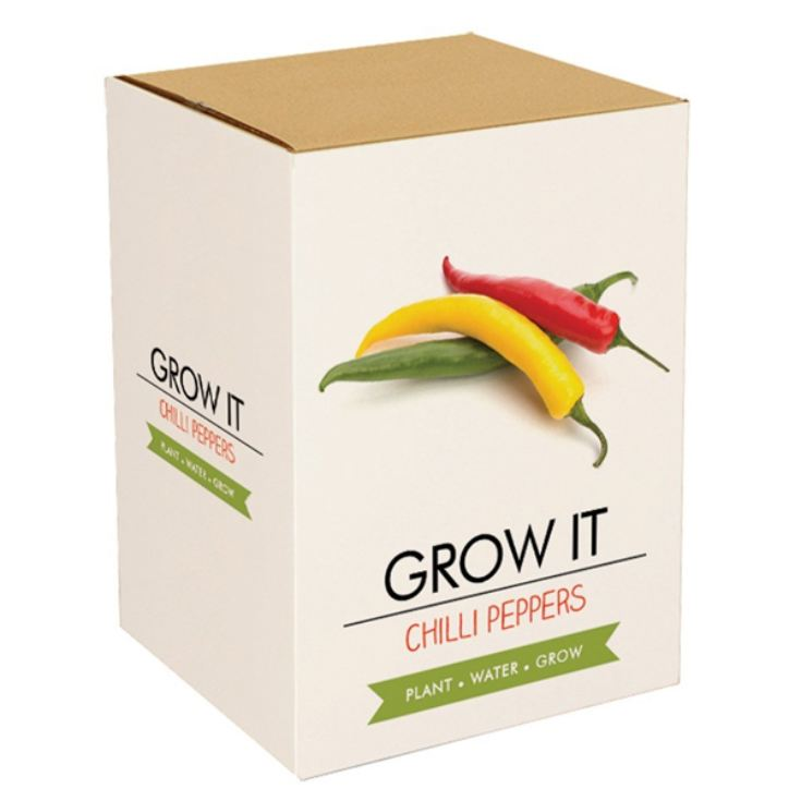 Grow Your Own Chilli Plant product image