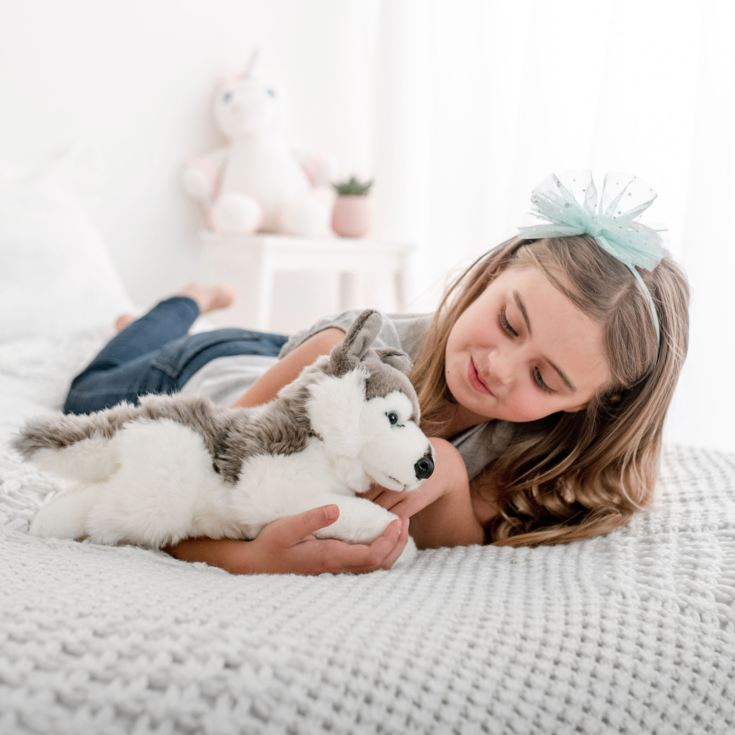 Husky Soft Toy product image