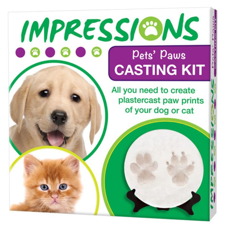 Paw Casting Kit product image