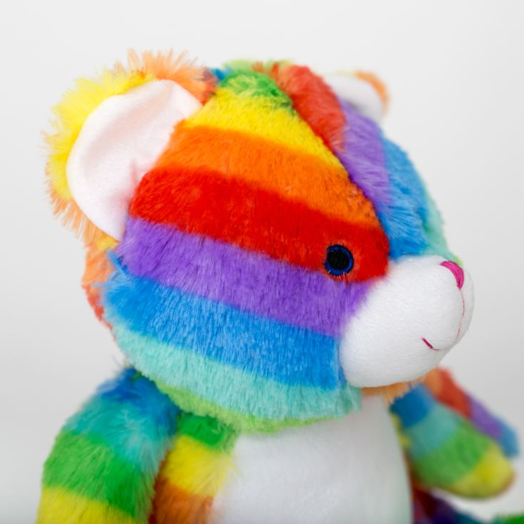 Personalised Embroidered Cubbies Rainbow Bear Soft Toy product image