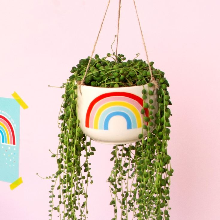 Chasing Rainbows Hanging Planter product image