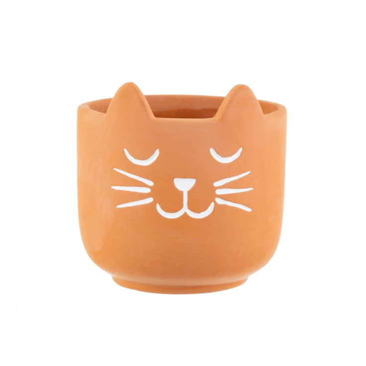 Mini Cat's Whiskers Terracotta Planter product image