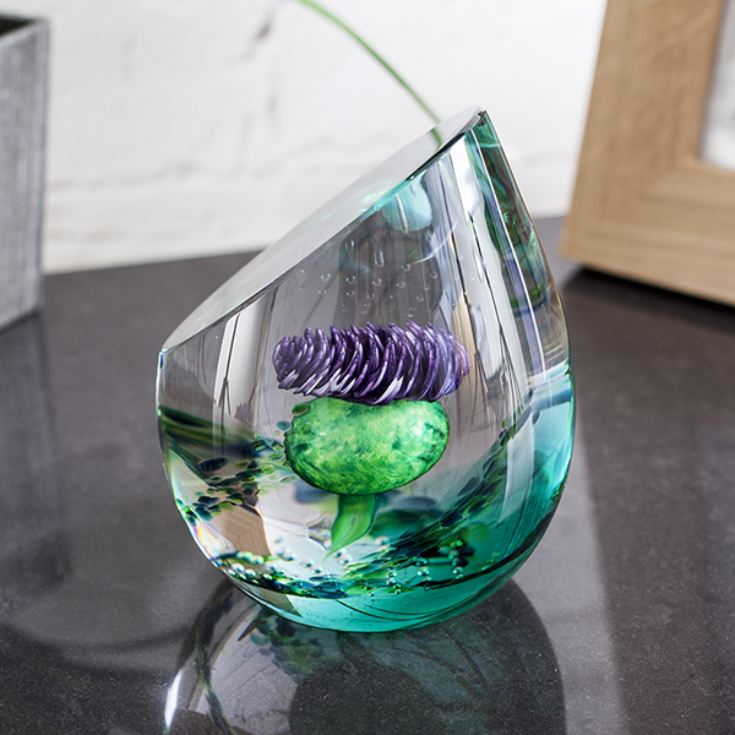 Scottish Jewel Of The Glen Paperweight By Caithness Glass product image