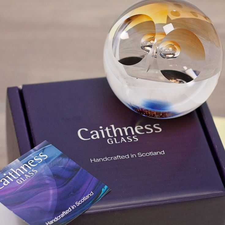 Wise Owl Paperweight By Caithness Glass product image