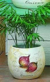 Country Kitchen Planter 16 cm