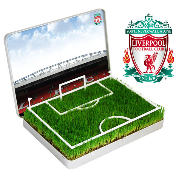 Grow Your Own Mini Football Pitch Liverpool - Liverpool Gifts
