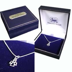 Guardian Angel Necklace with Personalised Box
