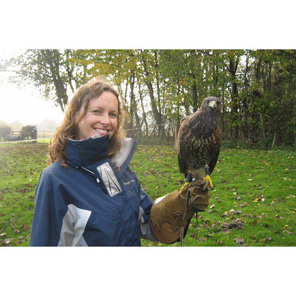 Bird Of Prey Half Day Experience Uk Wide