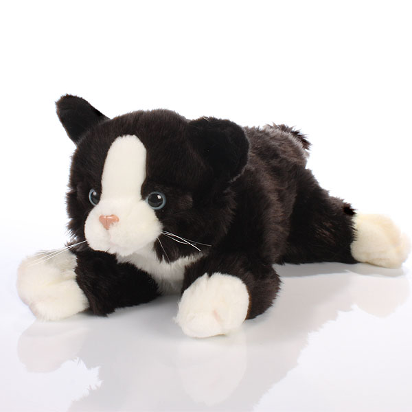 Black and White Cat - Cat Gifts