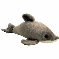 Freddy The Dolphin