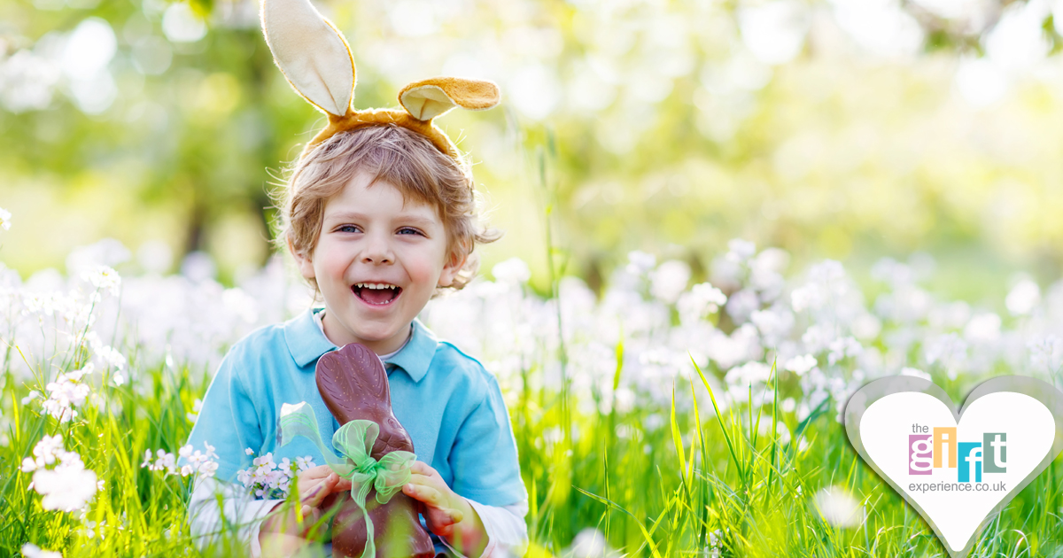 A little boy in a field eating an chocolate easter bunny