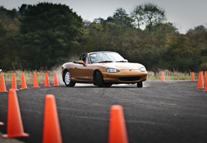 Bronze Drifting Experience