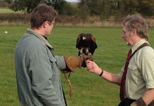 3 Hour Birds Of Prey Day Special Offer