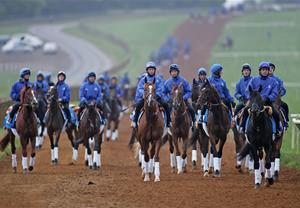 Classic Horseracing Tour