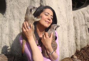 Meet the Meerkats Experience - Meerkat Gifts