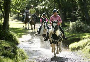 Introduction to Horse Riding for One - Riding Gifts