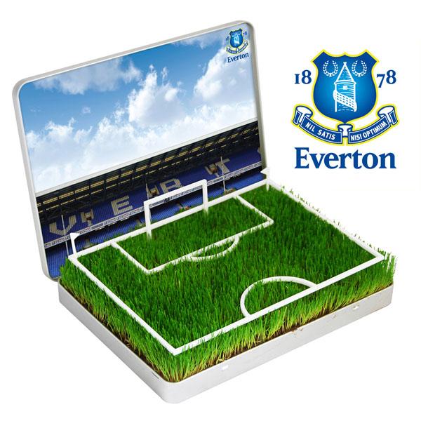 Grow Your Own Mini Football Pitch Everton