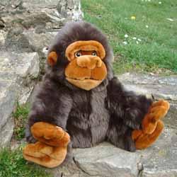 Cuddly Monkey