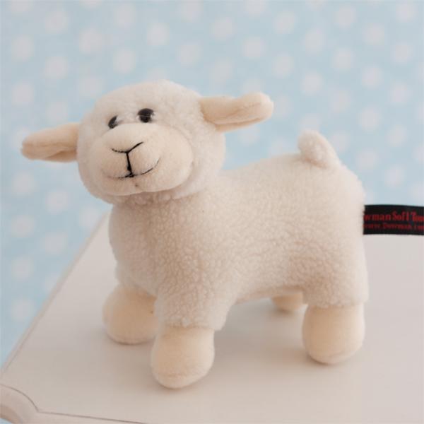 Cuddly Lamb - Cuddly Gifts
