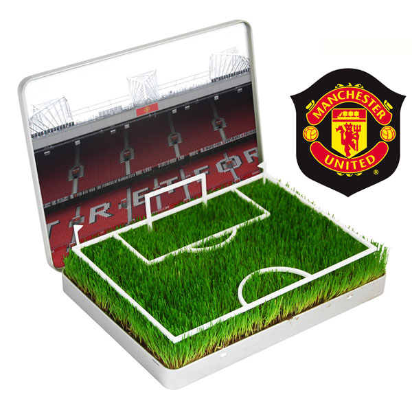 Grow Your Own Mini Football Pitch Manchester United - Manchester Gifts