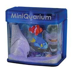 MiniQuarium - Funky Fish