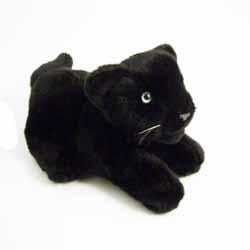 Panther Lying
