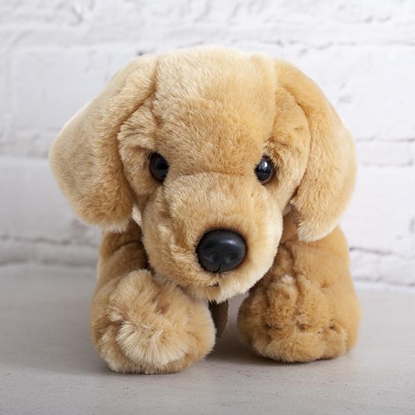 Honey Labrador Soft Toy - Labrador Gifts