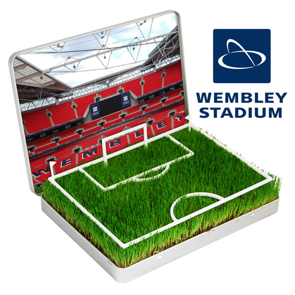 Grow Your Own Mini Football Pitch Wembley - Grow Your Own Gifts