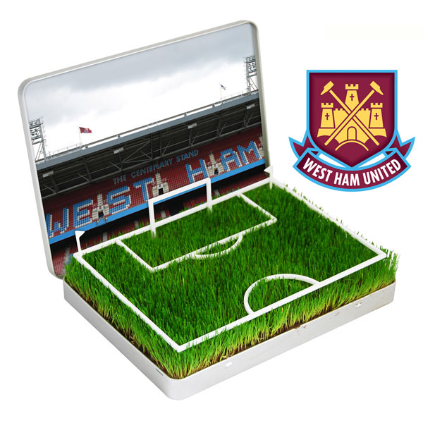 Grow Your Own Mini Football Pitch West Ham - Grow Your Own Gifts