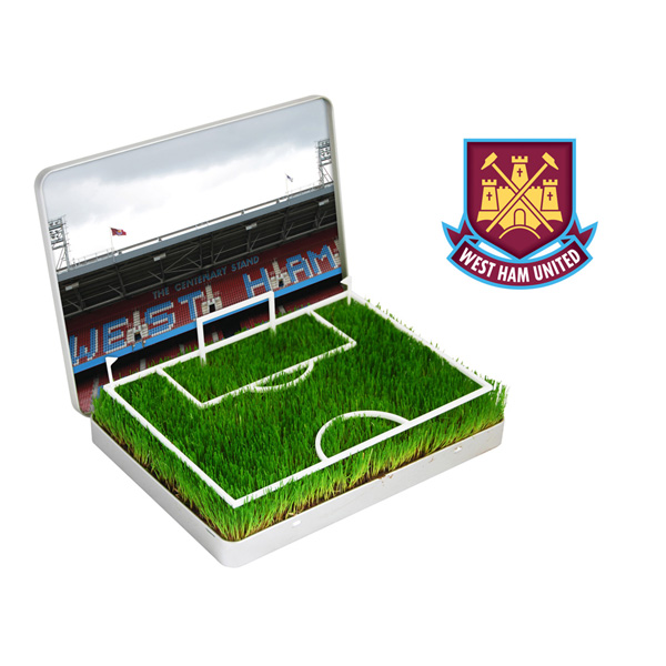 Grow Your Own West Ham Pitch